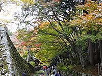 Hyakusaiji010