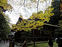 Hyakusaiji030