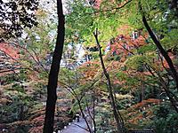 Ishiyama010