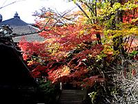 Ishiyama030
