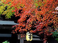 Ishiyama040