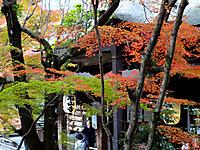 Ishiyama050