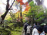 Saimyouji010