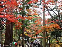 Saimyouji050