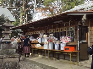 Hatsuharu2