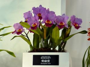 2012_0070