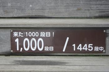 Dsc07292